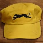 Gold Baseball Cap-500