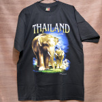 Thailand The Elephants Kingdom